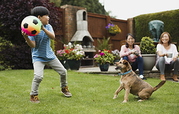 Child throwing ball to dog in backyard